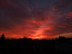 Rostock, Blick aus meinem Fenster